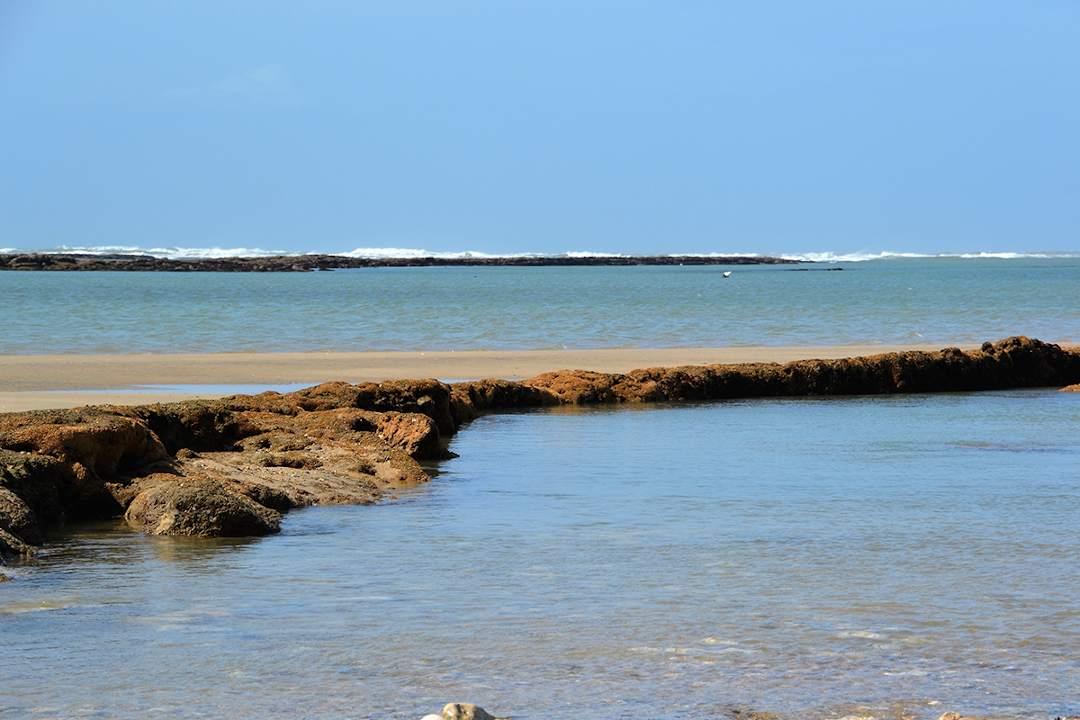 Maison de vacances 200 mètres de la plage Oléron